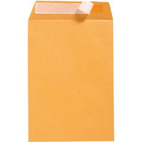 CUMBERLAND C4 ENVELOPES POCKET STRIP SEAL 100GSM 229 X 324MM GOLD BOX 250